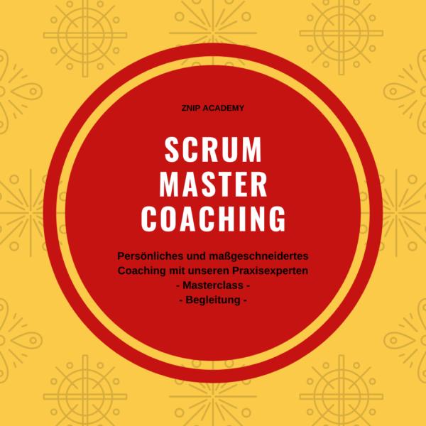 Scrum Master Coaching