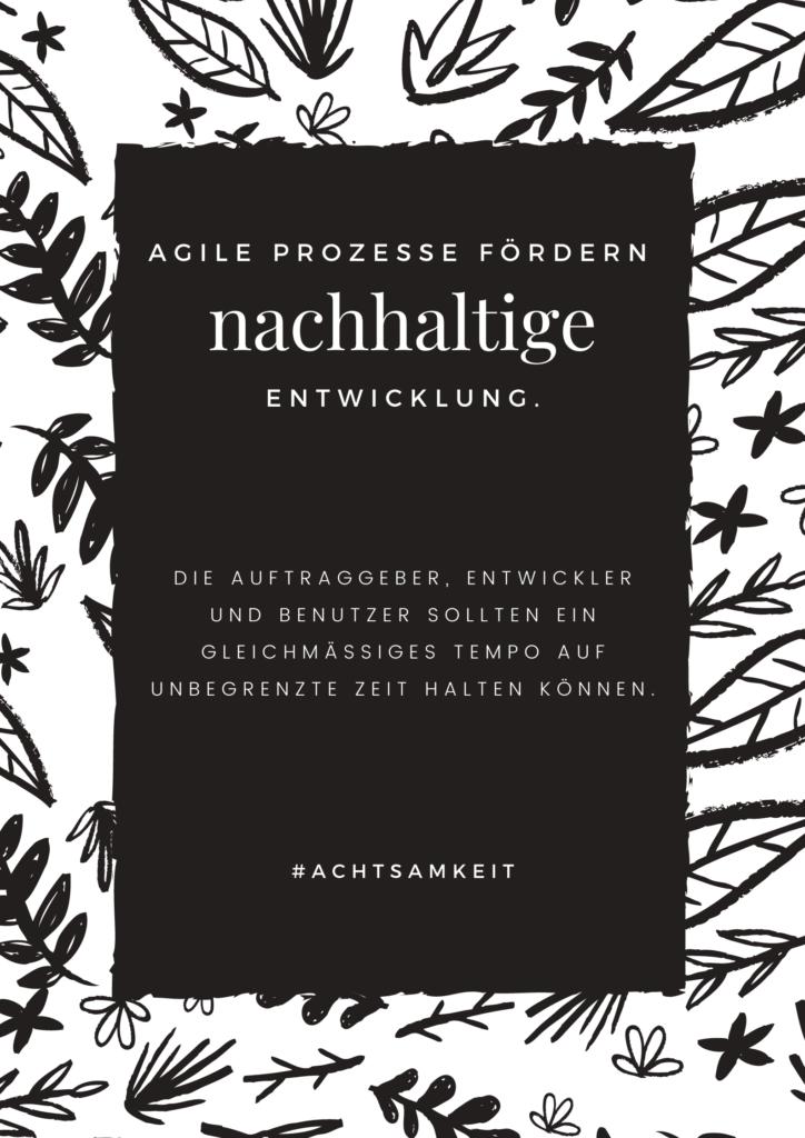 Agile Prozesse fördern nachhaltige Entwicklung. Die Auftraggeber, Entwickler und Benutzer sollten ein gleichmäßiges Tempo auf unbegrenzte Zeit halten können.